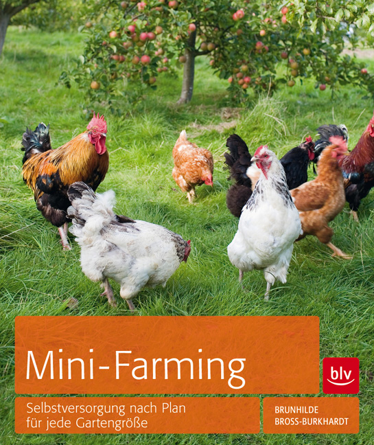 Mini-Farming Rezension